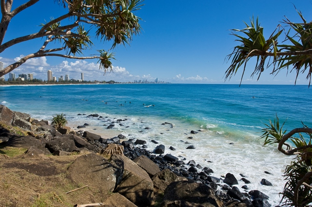 GOLD COAST COASTAL & AQUATIC SNAPSHOT