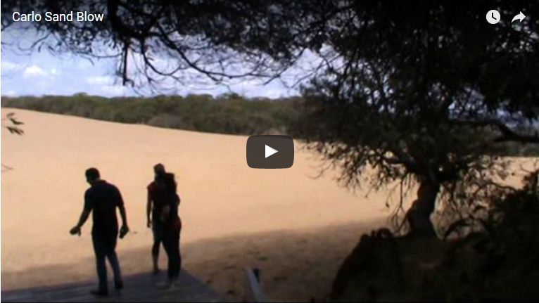CARLO SAND BLOW – COOLOOLA NATIONAL PARK – SUNSHINE COAST – QUEENSLAND