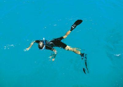 Snorkeller, Opal Reef, Wavelength Reef Charters